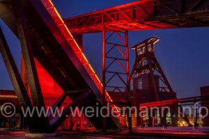 Weidemann_2013_2_42126.jpg